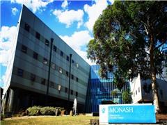 莫纳什大学IT专业入学要求提高 奥克兰大学奖学金开放!