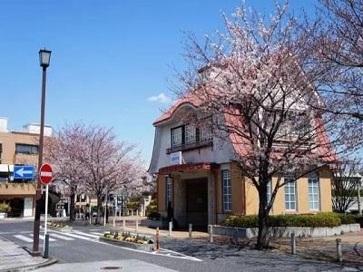 日本五大名校留学费用明细详细介绍!