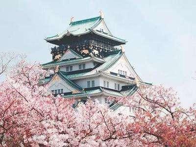 日本人心中top50的大学排名献上...第一名竟然不是东大!?