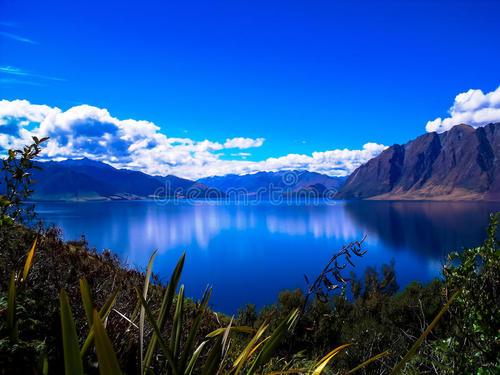 新西蘭留學