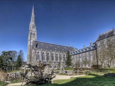 爱尔兰留学政策