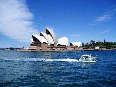 澳洲方水母