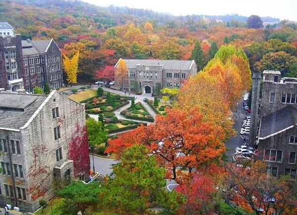 韓國延世大學