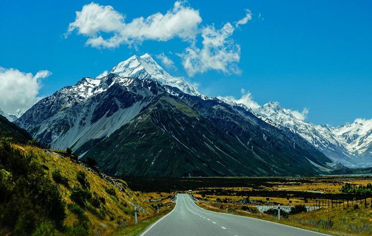 新西兰留学本科申请