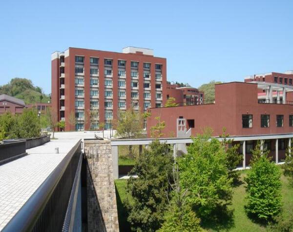 金泽大学申请条件