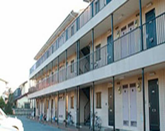 松户国际学院