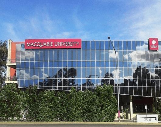 麥考瑞大學