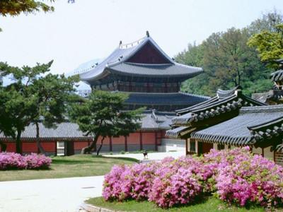 去韩国留学需要什么条件