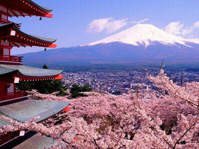日本签证所需材料