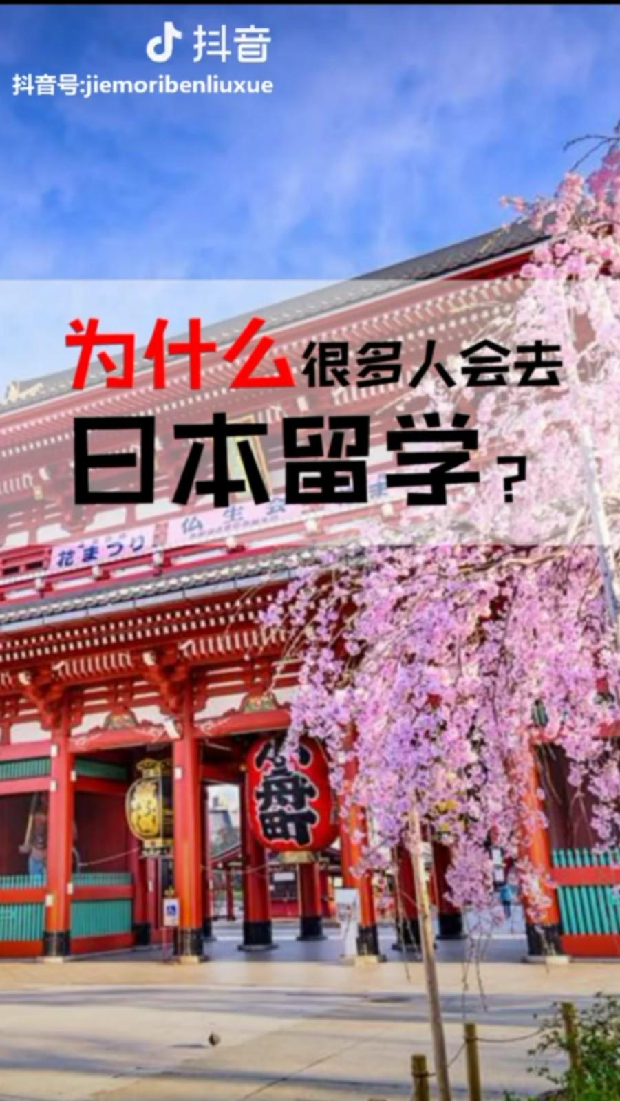 为什么很多人会去日本留学?