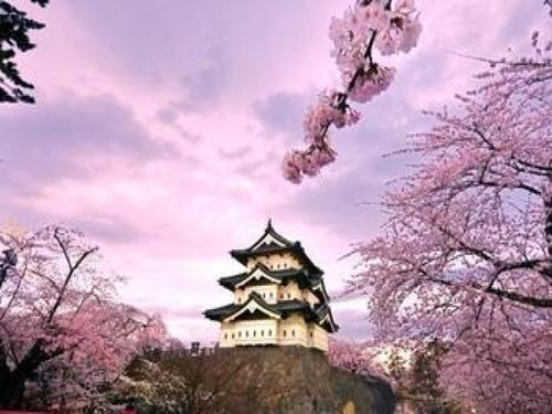 去日本留学费用
