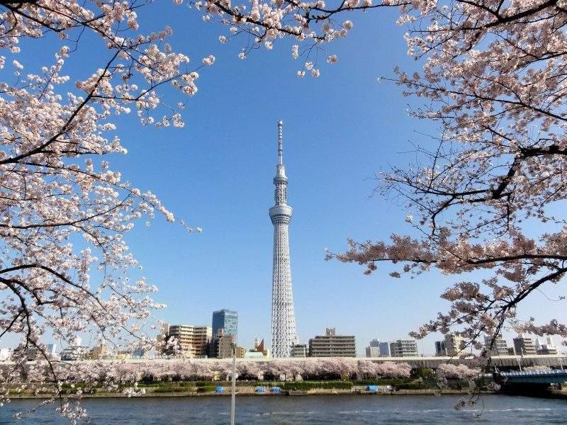 日本留学奖学金有哪些?(奖学金种类)