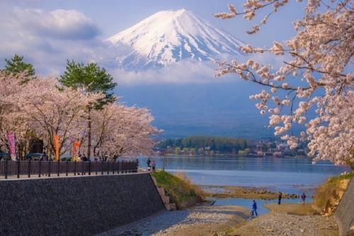 去日本留学要多少钱?
