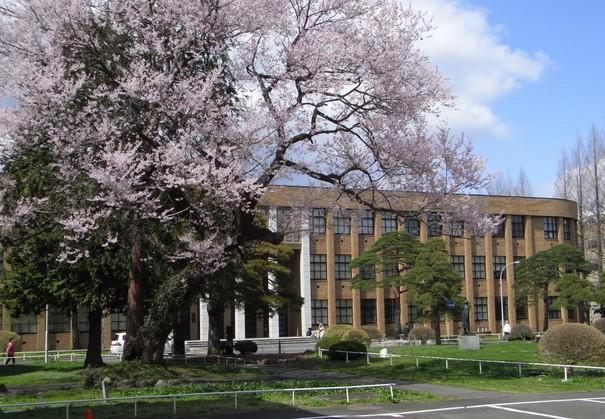 日本研究生留学费用