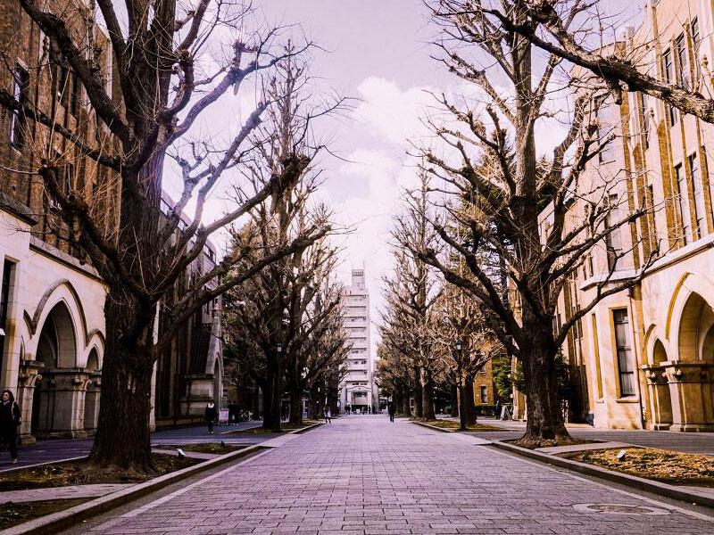 都2021年了,你还不知道日本留学费用可以全免?