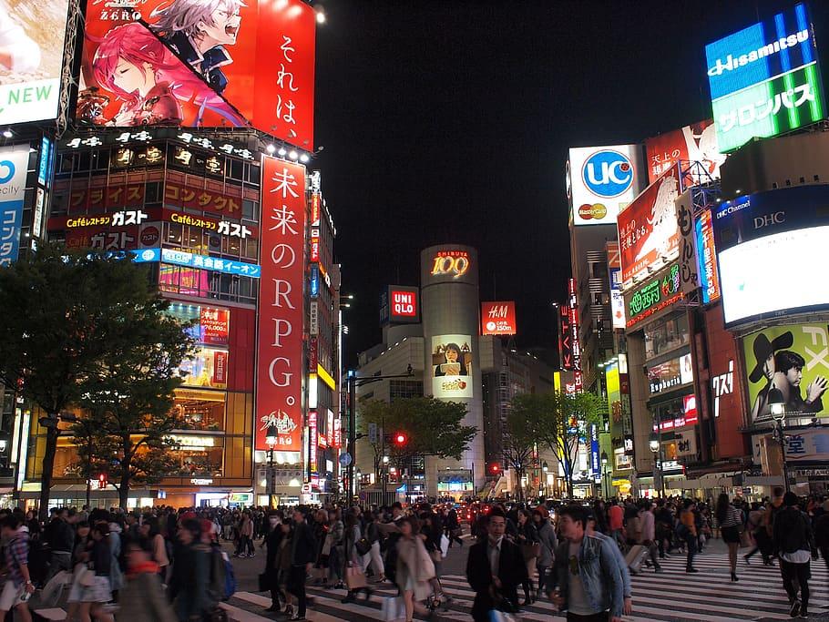 日本专门学校专业有哪些?(大全)