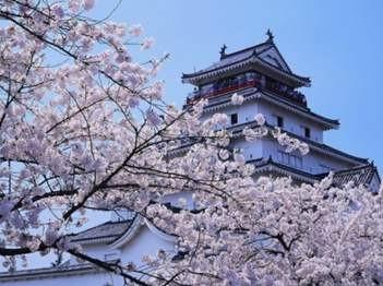 日本留学专升硕考名校!东工、立命馆不是梦!