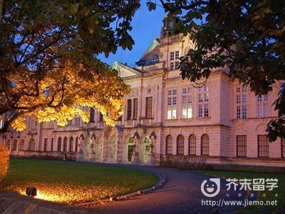 威尔士大学