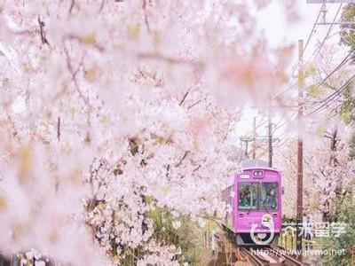 日本艺术留学