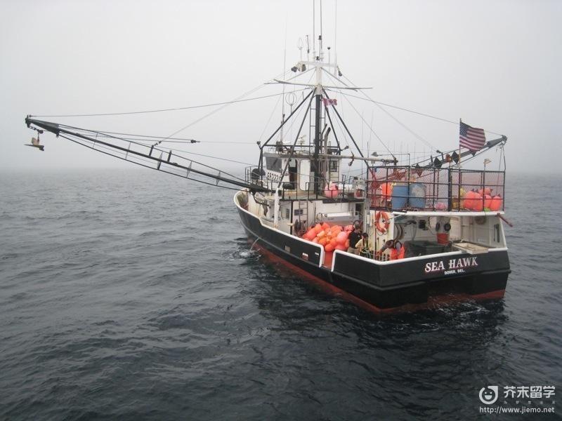 纽芬兰渔场