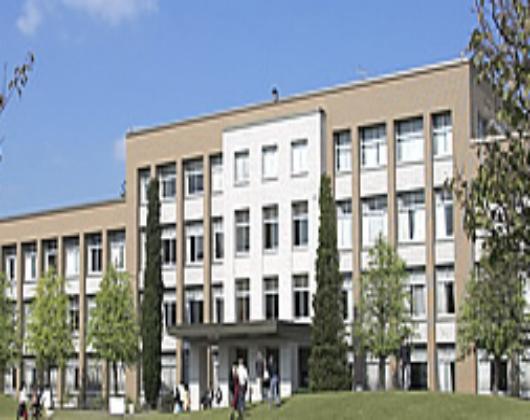 大学 国際 基督教